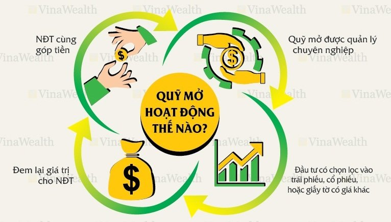 Quy mo Questra Holdings